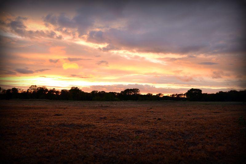 _sunset101011