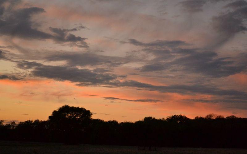 _sunset1100611